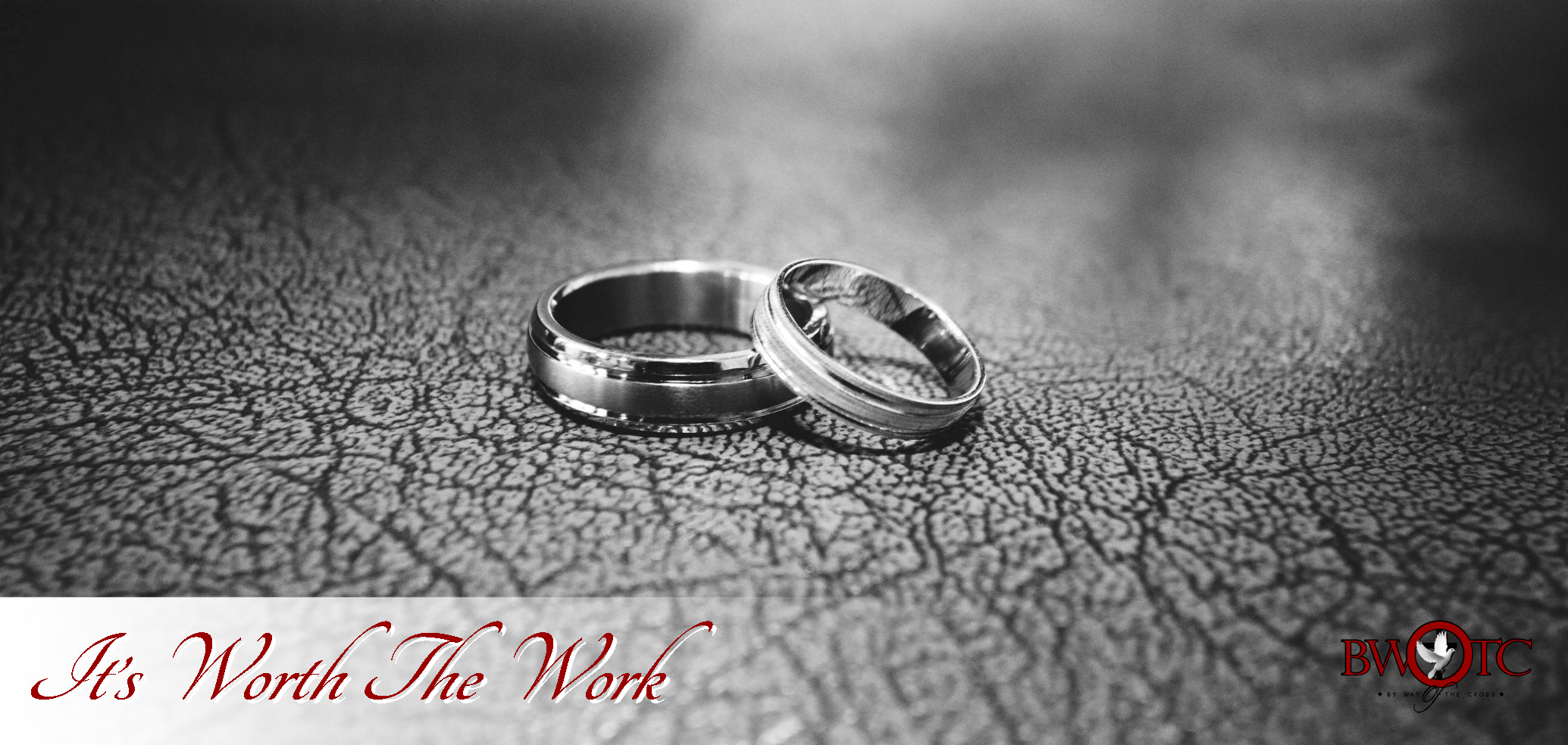 BWOTC Featured Image - RINGS